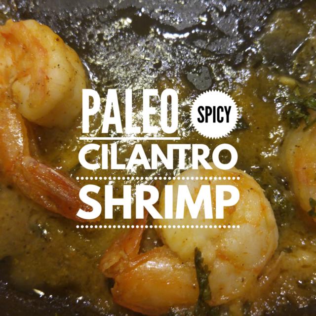 Paleo Lime Cilantro Shrimp